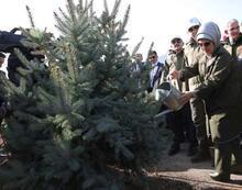Cumhurbaşkanı Erdoğan: Orman varlığımızı 17 yılda 22,6 milyon hektara çıkardık