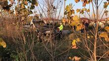 Kaza yapan otomobilden düşen bayrağı katlayıp, araca koydu