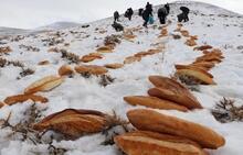 'Kaza bela def olsun' diye doğaya 2001 ekmek bıraktılar