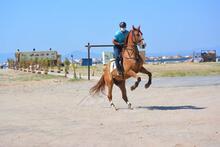 Balıkesir'deki Sarımsaklı Plajları'nın güvenliği atlı jandarma timlerine emanet