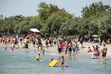 Menekşe Plajı'ndan şok eden görüntü!