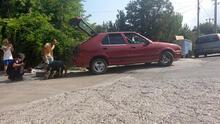 Antalya'da yılan paniği! Otomobile girdi saatlerce çıkarılamadı