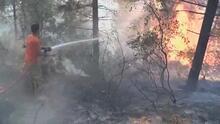 Aydos Ormanı'nda 4 farklı noktada yangın çıktı
