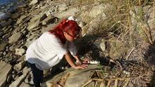 Çanakkale'de 9 milyon yıl öncesine ait mamut fosilleri bulundu
