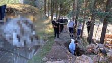 Toprağa gömülen köpek polisi alarma geçirdi