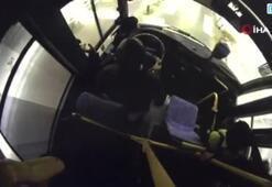 Şoförün, yaya geçidinde bekleyen köpeğe yol verdi