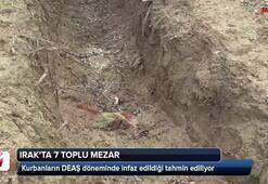 Ormanda 7 toplu mezar bulundu