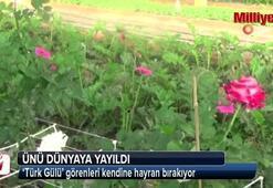 Türk Gülü' görenleri kendine hayran bırakıyor