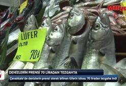 Denizlerin prensi 70 liradan tezgahta