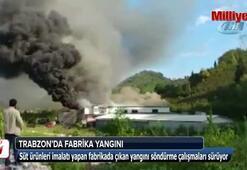Trabzonda süt ürünleri imalatı yapan bir fabrikada yangın çıktı