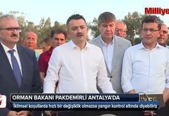 Antalyadaki orman yangınıyla ilgili Bakan Pakdemirliden açıklama
