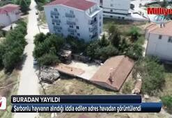 Şarbonlu hayvanın alındığı iddia edilen ev havadan görüntülendi