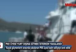 PKK üyesi kadın yurt dışına kaçmak isterken yakalandı