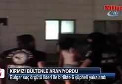 Bulgar suç örgütü lideri ile birlikte 6 şüpheli İstanbulda yakalandı