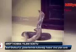 İllüzyonist Arefi kobra yılanı ısırdı