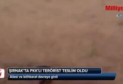 PKKya ağır darbe Teslim oldu