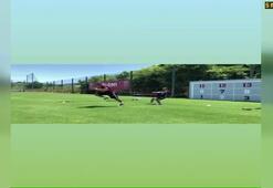 Lukas Podolski formunu koruyor