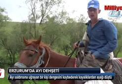 Erzurumda ayı saldırısı
