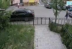 Rusya'da alkollü sürücü dehşeti