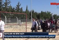Ramazan Bayramı için ülkelerine giden Suriyelilerin sayısı 46 bini aştı