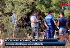 Bodrumsa ağaca asılı ceset bulundu