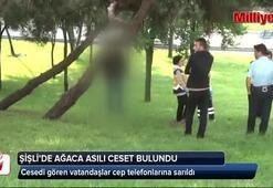 Şişli'de ağaca asılı ceset bulundu