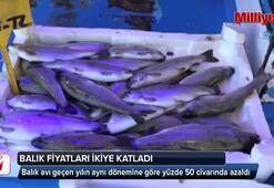 Trabzonda balık fiyatları ikiye katladı