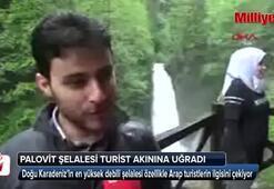 Doğu Karadenizin en yüksek debili şelalesine turist akını
