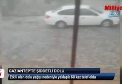 Gaziantepte şiddetli dolu yağışı kamerada