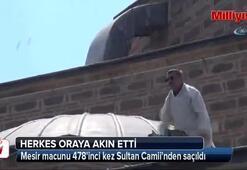 Şifalı mesir macunu 478inci kez Sultan Camiinden saçıldı