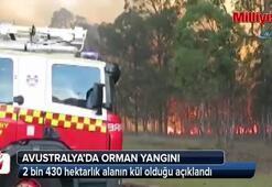 Avustralya'daki orman yangını büyüyor