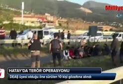 Hatay'da 10 DEAŞ'lı gözaltına alındı