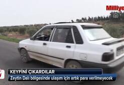 Zeytin Dalı bölgesinde ulaşım için artık para verilmeyecek