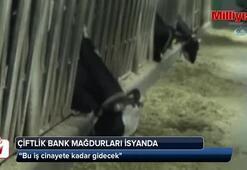 Çiftlik Bank mağdurları isyanda