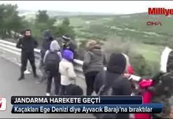 Kaçakları Ege Denizi diye Ayvacık Barajına bıraktılar