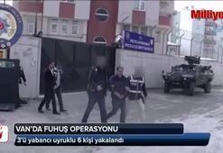 Van'da fuhuş operasyonu
