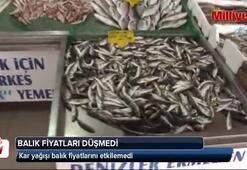 Kar yağdı, balık fiyatlarında düşüş yaşanmadı
