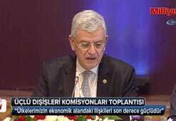Türkiye-Azerbaycan- Gürcistan üçlü Dışişleri Komisyonları Toplantısı
