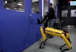 Robota işkence yaptılar