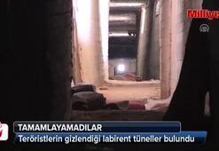 Afrinde teröristlerin gizlendiği labirent tüneller bulundu