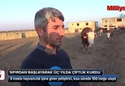 5 inekle başladı 100 hayvanlık çiftlik kurdu
