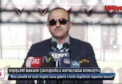 Dışişleri Bakanı Çavuşoğlu: Terör örgütlerinin tepesine bineriz