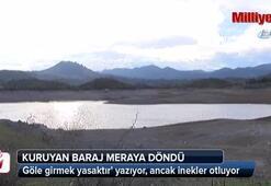 Kuruyan baraj meraya döndü