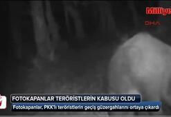 Karadenizdeki fotokapanlar, teröristlerin kabusu oldu