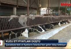 Tarım Bakanlığı müdahil oldu, kasaplarda kuzu eti fiyatları düştü