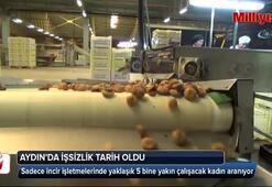 Aydın'da işsizlik tarih oldu