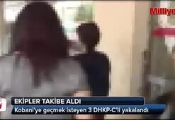 Kobaniye geçmek isteyen 3 DHKP-Cli yakalandı