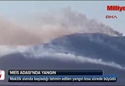 Meis Adasında yangın