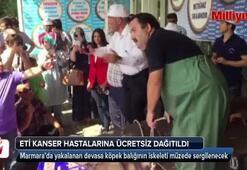 Köpek balığı, kanser hastalarına ücretsiz dağıtıldı
