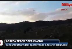 Tendürekte operasyon: 5 terörist öldürüldü